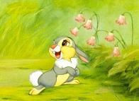 Thumper-2